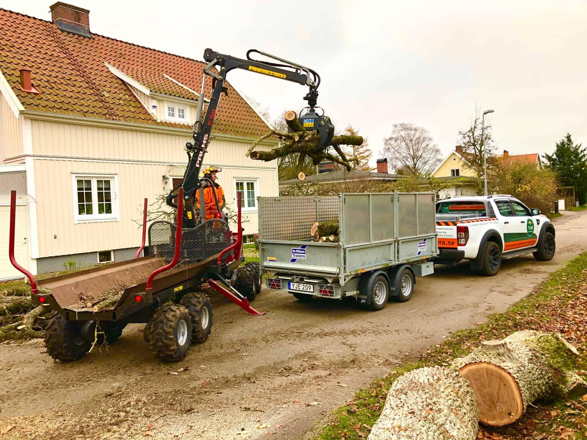 Stubbfräsning Halland - Halmstad Falkenberg Varberg